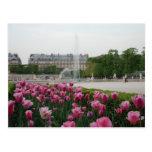 Tuileries Garden in bloom Postcards