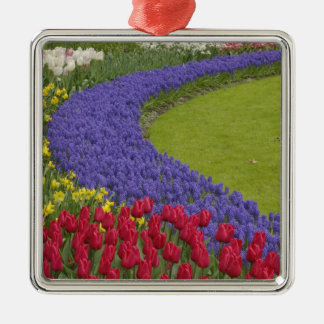 Tulip and Grape Hyacinth and daffodil garden, Silver-Colored Square Decoration