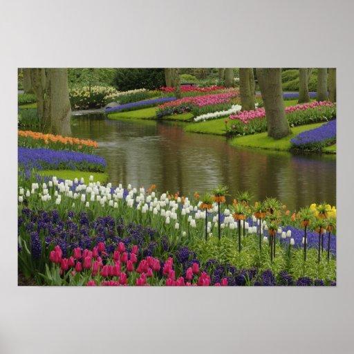 Tulip and hyacinth garden, Keukenhof Gardens, 2 Print
