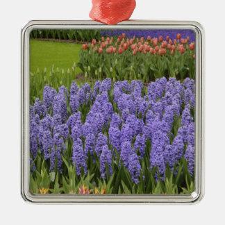 Tulip and Hyacinth garden, Keukenhof Gardens, Christmas Ornament
