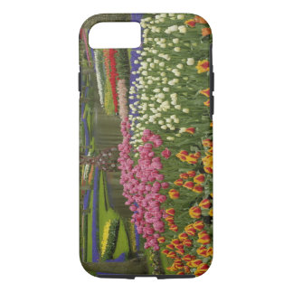 Tulip and hyacinth garden, Keukenhof Gardens, iPhone 8/7 Case