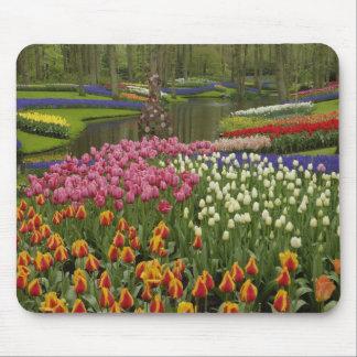 Tulip and hyacinth garden, Keukenhof Gardens, Mouse Mat