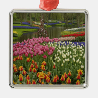 Tulip and hyacinth garden, Keukenhof Gardens, Silver-Colored Square Decoration