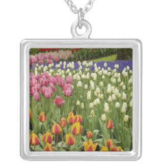 Tulip and hyacinth garden, Keukenhof Gardens, Silver Plated Necklace