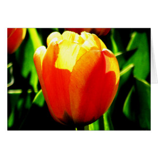 Tulip Art Note Card