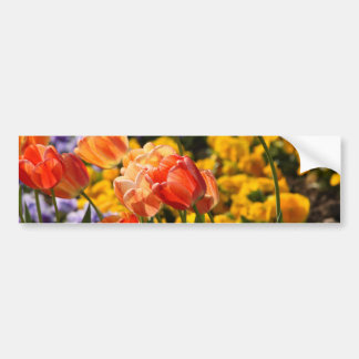 tulip bed bumper sticker