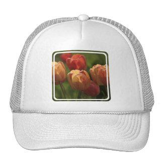 Tulip Blossoms Baseball Hat