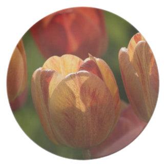 Tulip Blossoms Plate