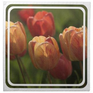 Tulip Blossoms Set of Four Napkins
