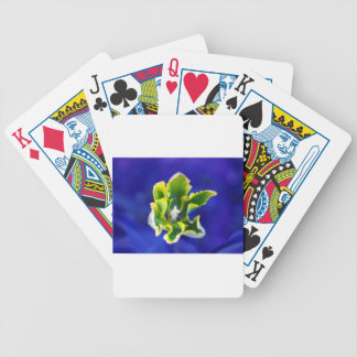 Tulip Blue Background.jpg Bicycle Playing Cards