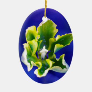 Tulip Blue Background.jpg Christmas Ornament