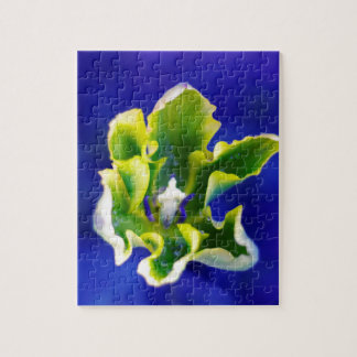 Tulip Blue Background.jpg Jigsaw Puzzle