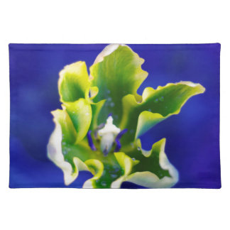 Tulip Blue Background.jpg Placemat