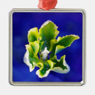 Tulip Blue Background.jpg Silver-Colored Square Decoration