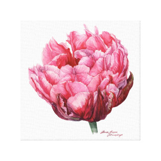 Tulip. Botanical watercolor Gallery Wrapped Canvas