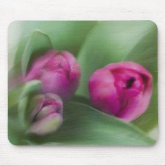 Tulip Bouquet Mouse Mat