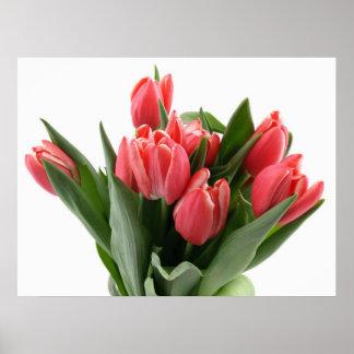 Tulip Bouquet Poster
