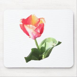 Tulip Bud Mousepad