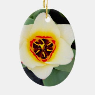 Tulip Ceramic Oval Decoration