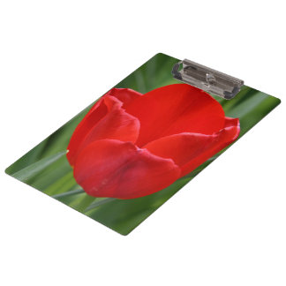 Tulip Clipboard