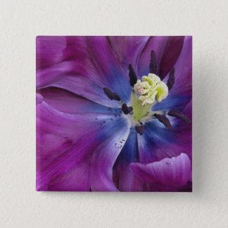 Tulip close-up, Keukenhof Gardens, Lisse, 2 15 Cm Square Badge