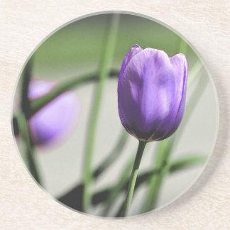 Tulip Coasters