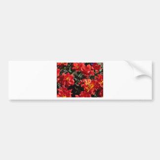 tulip,double red tulip bumper stickers