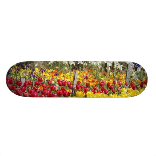 Tulip Fenceline Skate Board Deck
