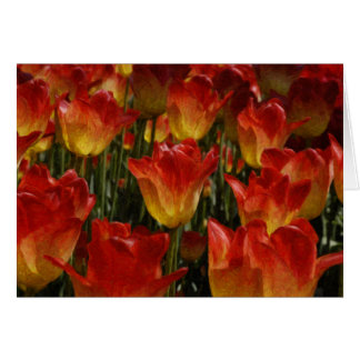 Tulip Festival Custom Greeting Card