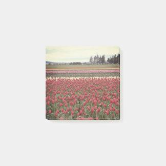 Tulip Festival Post It Notes