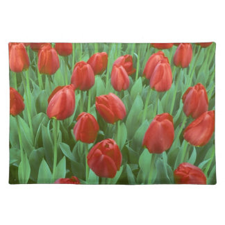 Tulip field blooms in the spring. placemat