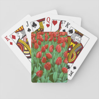 Tulip field blooms in the spring. playing cards