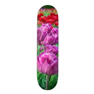 Tulip Field Custom Skateboard