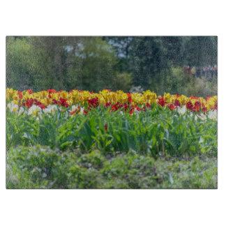 Tulip field in Holland glass Cutting Board