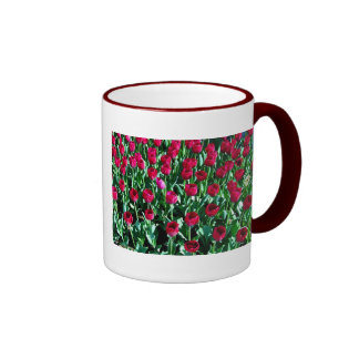 Tulip Field Ringer Mug