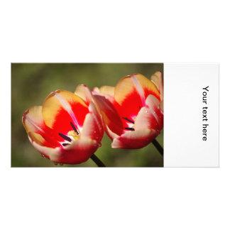 Tulip Flowers Photo Card