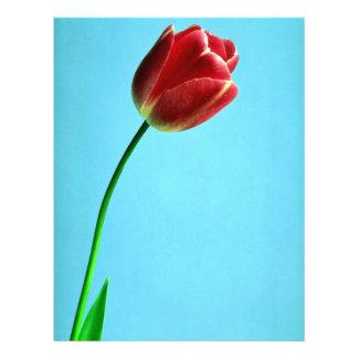 Tulip Full Color Flyer