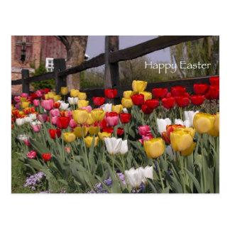 Tulip Garden Happy Easter Postcard