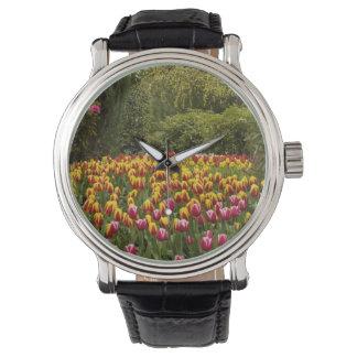 Tulip garden Photo watch