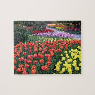 Tulip Gardens Jigsaw Puzzle