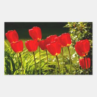 tulip impressions rectangular sticker