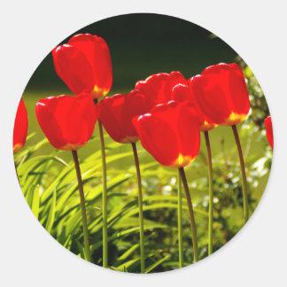 tulip impressions round stickers