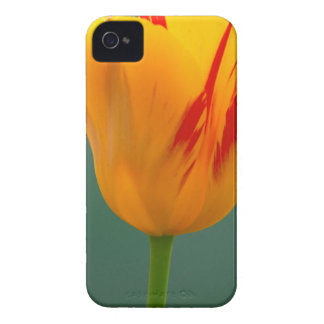Tulip iPhone 4 Case-Mate Cases