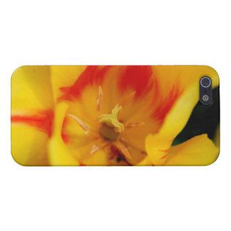 tulip macro iPhone 5 case