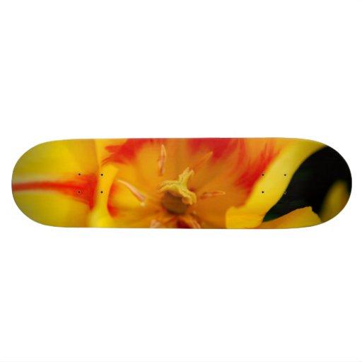 tulip macro skate decks