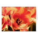 Tulip Note Card
