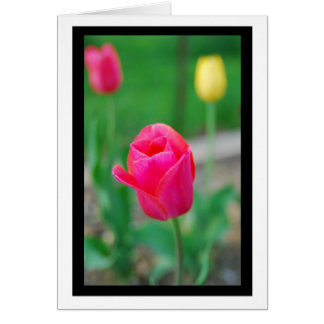Tulip Notecard Greeting Card