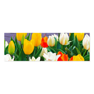 Tulip Pack Of Skinny Business Cards