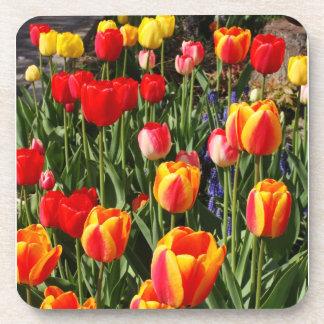 Tulip Patch Coasters