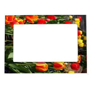 Tulip Patch Magnetic Picture Frame
